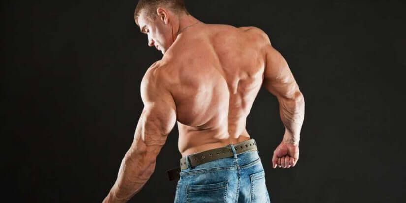 How-to-Build-Back-Muscles-825x412